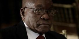 'Zuma kan dit gewoon naast zich neerleggen'