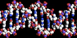Volledige DNA-analyse weldra op doktersvoorschrift