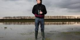 Dirk Draulans over seksfeestjes Oxfam: 'Die mensen moeten zich toch ook kunnen ontspannen?'