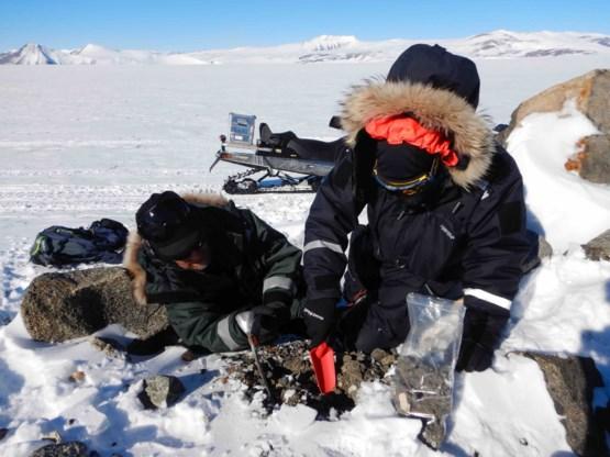 Belgische wetenschappers vinden duizenden micrometeorieten op Antarctica