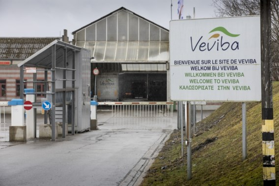 Groep landbouwers zou omstreden Veviba overnemen