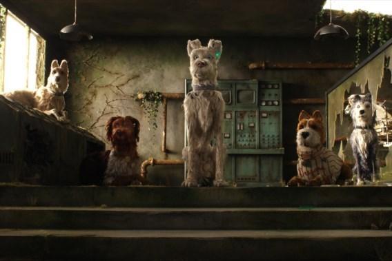 De 7 beste films van de week