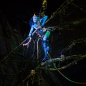 Cirque du Soleil strijkt in 2019 in Antwerpen neer