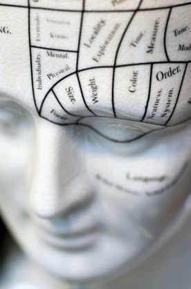 Loopbaanadvies op basis van je schedel