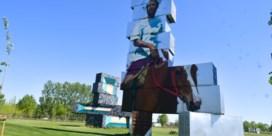 Festivalweide van Werchter wordt (een beetje) publiek bezit
