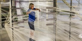 Aandeelhouders Balta dragen verliezen in stilte