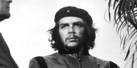 Fidel Castro was een pin-up