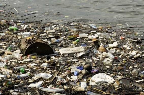 Europa ten strijde tegen plastic met verbod op wattenstaafjes en rietjes