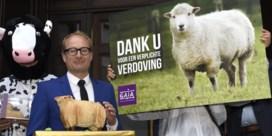 Vlaanderen mag onverdoofd slachten op tijdelijke slachtvloer verbieden