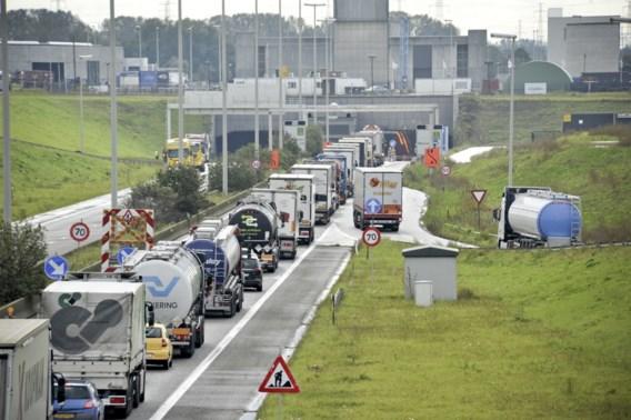 Steeds meer Belgische vrachtwagens op onze wegen