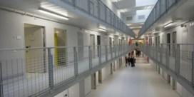 'Laat gevangenen bij de groendienst werken'