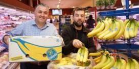 Kilogram coke tussen bananen in Delhaize in Lochristi