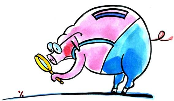 Wat moet de fiscus weten over kleine beleggingen?