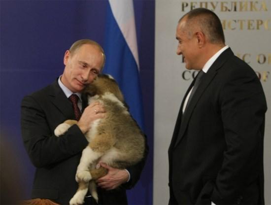 Poetin bant honden, hoeren en hooligans
