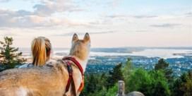 De beste tips voor een trip naar Oslo