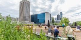 Elke stad wil park op poten