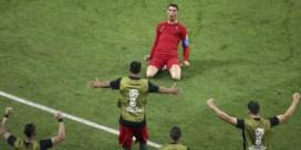 De geit van het WK