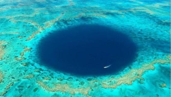 Tweede grootste koraalrif ter wereld niet langer bedreigd