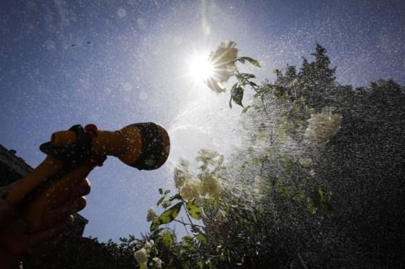 Maand juni droogste maand in meer dan veertig jaar