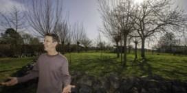 Burgemeester Holsbeek stuurt reinigingsfirma naar buurman Chris Dusauchoit