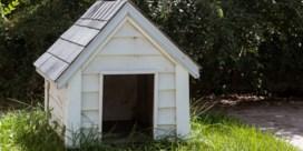 Vrouw veroordeeld voor uitstrooien van assen overleden man bij hondenhok