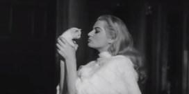 Kat en hond: de vergeten filmsterren