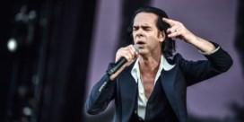 Nick Cave and the Bad Seeds: Wat hebben die instrumenten u wel misdaan?