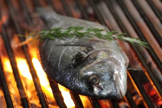 Voor het eerst eten we meer gekweekte dan gevangen vis
