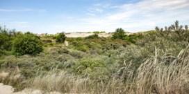 Dit zijn de droogtemaatregelen van West- en Oost-Vlaanderen