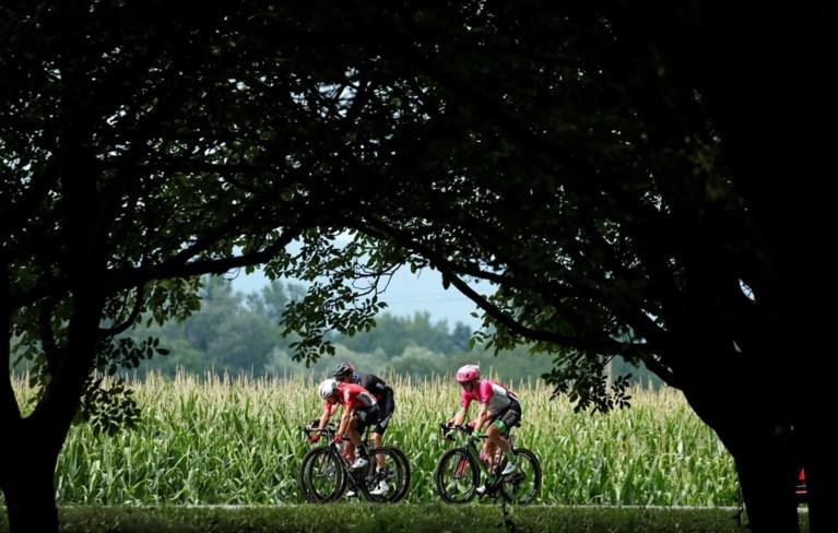 Peter Sagan geeft groene trui nog extra glans met derde ritzege, Belgen kleuren etappe