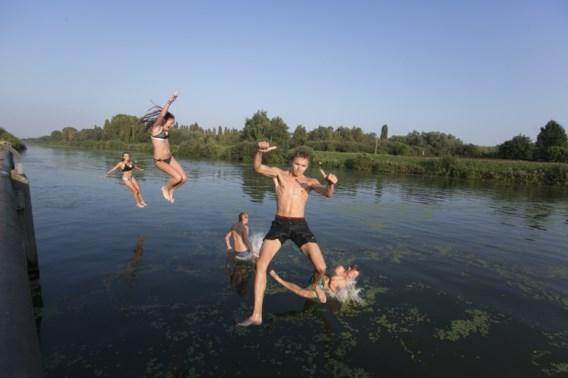 Waarom zwemmen in plassen en kanalen echt wel gevaarlijk is