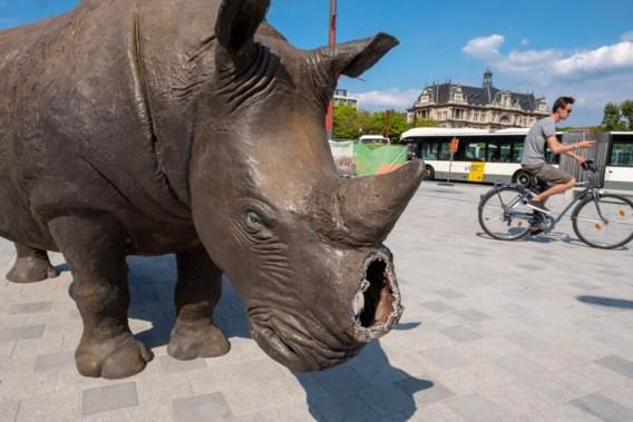 Replica van neushoorn valt ten prooi aan Antwerpse vandalen