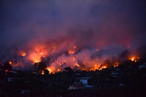 Zeker twintig doden bij bosbranden rond Athene, ook Vlamingen geëvacueerd