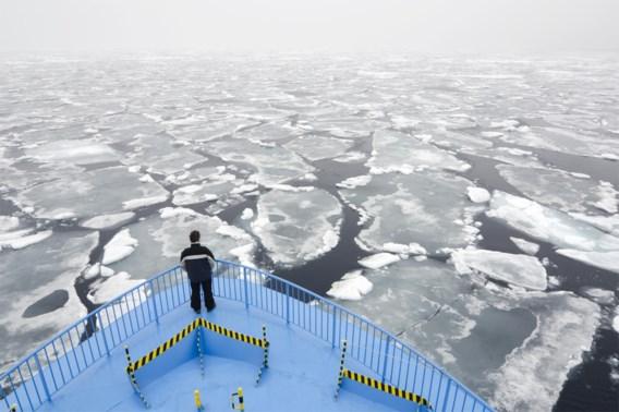IJsbeer valt man aan op Spitsbergen