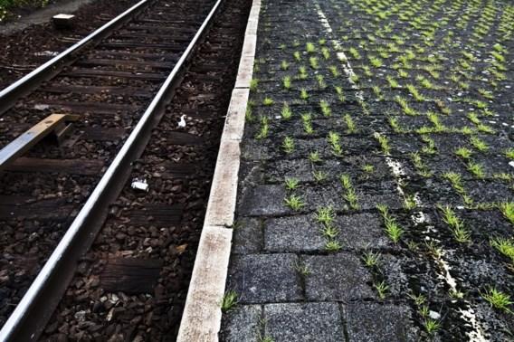 Vier zelfdodingen op het spoor op dezelfde plek in vier dagen tijd