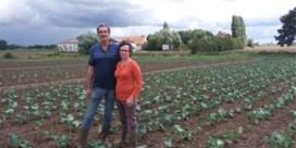 Colruyt koopt West-Vlaamse bioboerderij