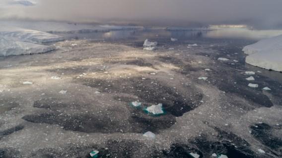 Sterkste ijs aan Noordpool breekt voor het eerst: 'Schrikwekkend'