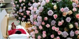 Fans nemen afscheid van Aretha Franklin
