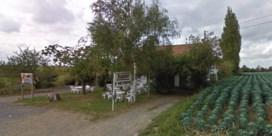 Cafébazin in Poperinge brutaal overvallen
