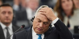 Koppige Orban splijt EVP