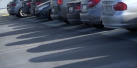 Consultants rijden fors minder voor 5 euro per dag
