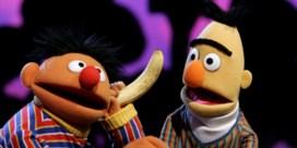 'Natuurlijk zijn Bert en Ernie een koppel'