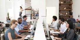 Hoe gezond is het om in een open kantoortuin te werken?