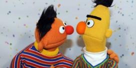 Bert en Ernie dan toch geen koppel? 'Ze zijn beste vrienden'