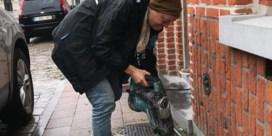 """Groen&Co Wetteren legt geveltuintjes aan in trottoir: """"Stuk voor stuk bouwovertredingen"""""""