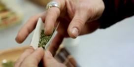 Cannabiswinkels in Brussel: legaal, of zit er een geurtje aan?