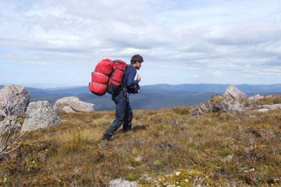 Belg steekt alleen winters Tasmanië over: 'Nog nooit zoveel gehuild'