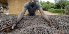 Eerlijke chocolade is een mensenrecht