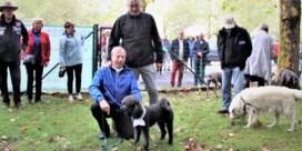 Dierenwelzijn Zelzate heropent hondenweide dan toch niet op verkiezingszondag