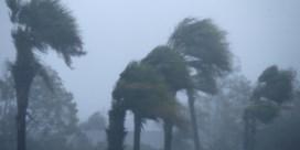 'Extreem gevaarlijke' orkaan Michael bereikt Florida: veel schade en minstens één dode